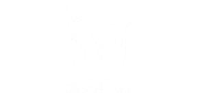 Vendor-logos-whiite_0007_Wallgreens