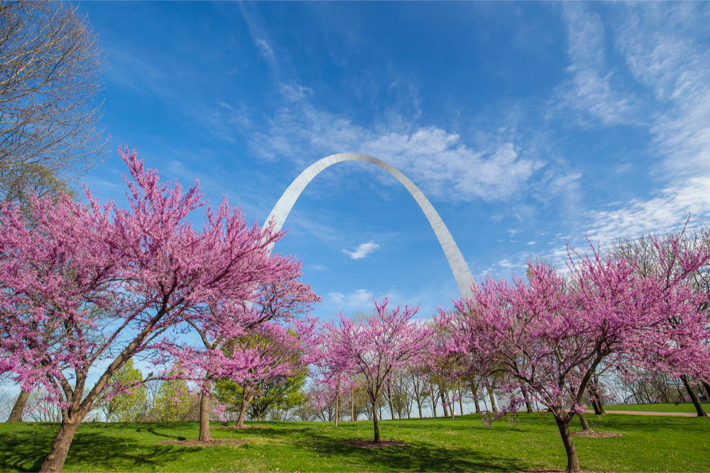 Spring In St. Louis: 4 Things To Do Outdoors